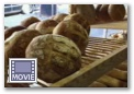 Click here to see a video on Bakers, Bread and Pastry